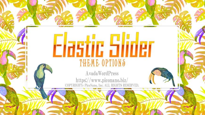 テーマオプション Elastic Slider